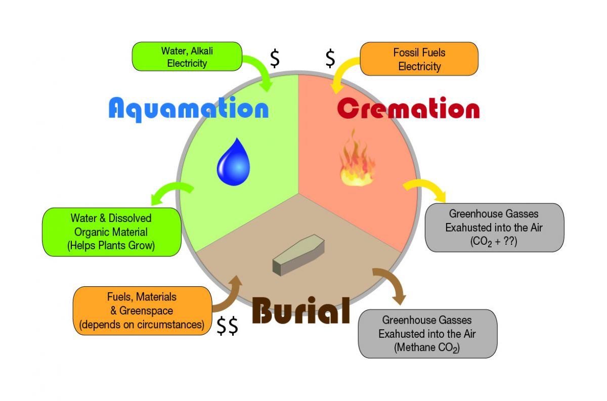 Burial, Cremation or Aquamation - which is greener?